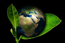 New Ways For Small Businesses To Go Green