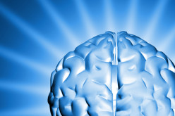 Brain Also Needs Extra Energy To Think And Plan