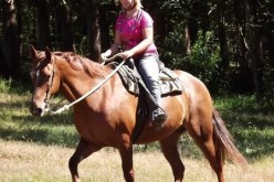 Riding Rodeo Bull In Easy Manners