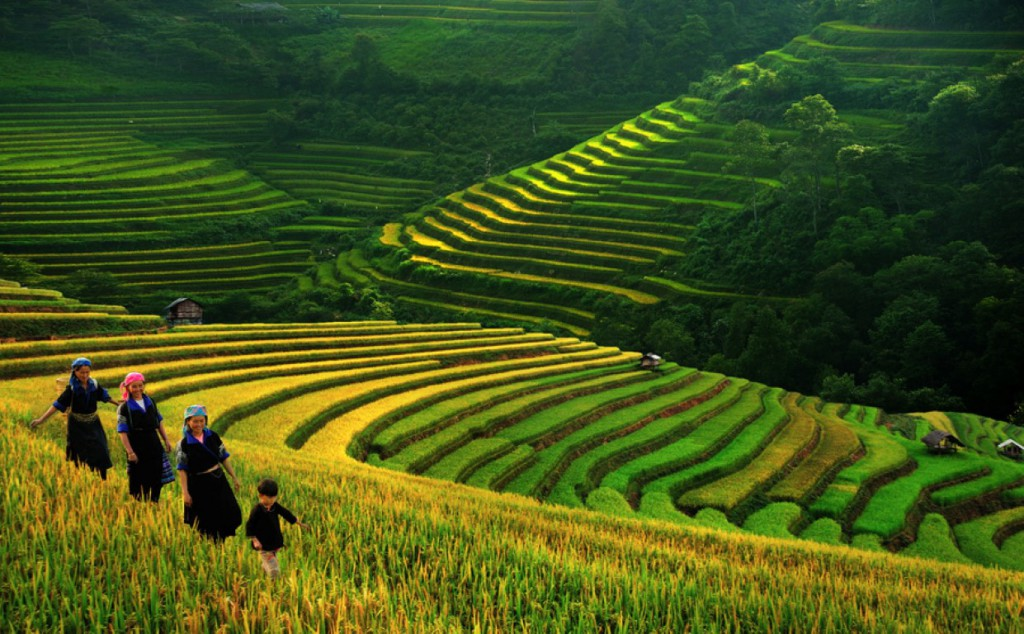 North Vietnam Tours And Travel With Best Vietnamese Local Agency