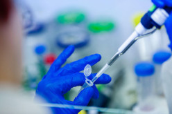 Stem Cell Research Shows Promising Avenues To Gift Regenerative Medicine
