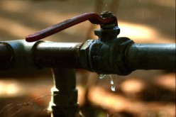 Plumbing Leaks Attract Household Pests