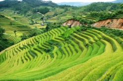 Experience The Best Of Vietnam With Viet Bamboo Travel's – Vietnam Travel Packages Like No Other