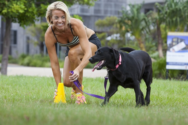 How To Train Your Pet Dog