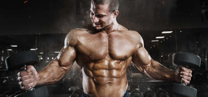 Reasons and Symptoms of lower Testosterone levels