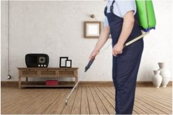 Importance Of Hiring The Pest Control Service