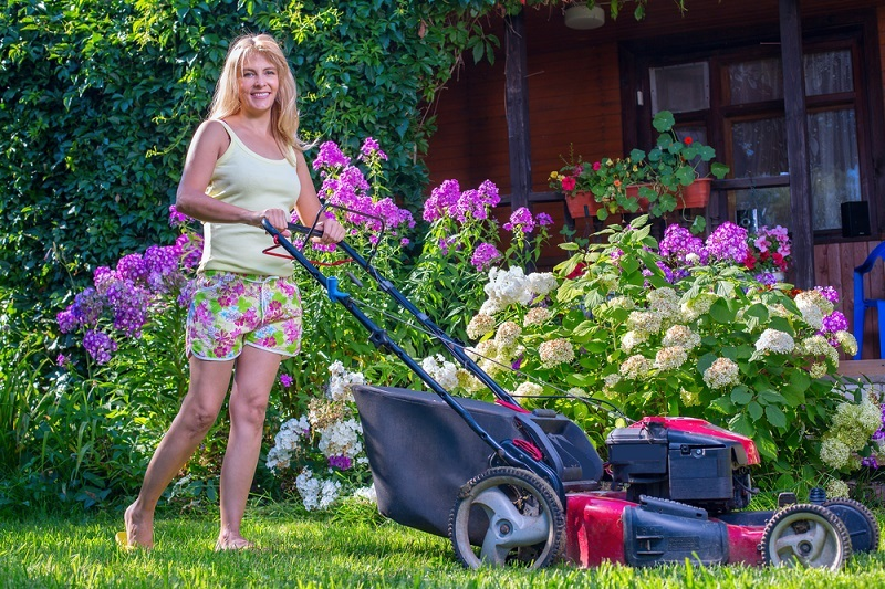 How To Maintain Your Garden Better During Summer