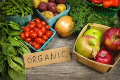Organic Food and The Need To Go Back To Healthy Eating