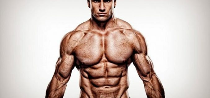 Awesome and Magical Anabolic Effect on Muscle Mass