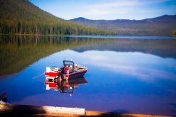 Lake Fishing: Tips For Beginners