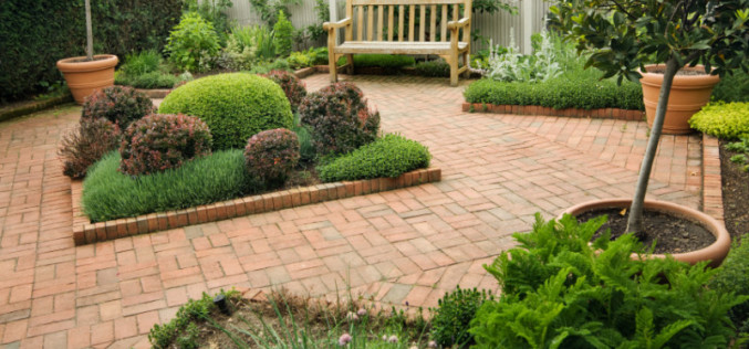 Ensure The Perfect Planting Of A Tree To Beautify Your Garden