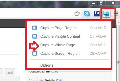 Webpage Screen Shot