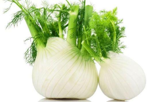 5 Plants For Indigestion Problem1