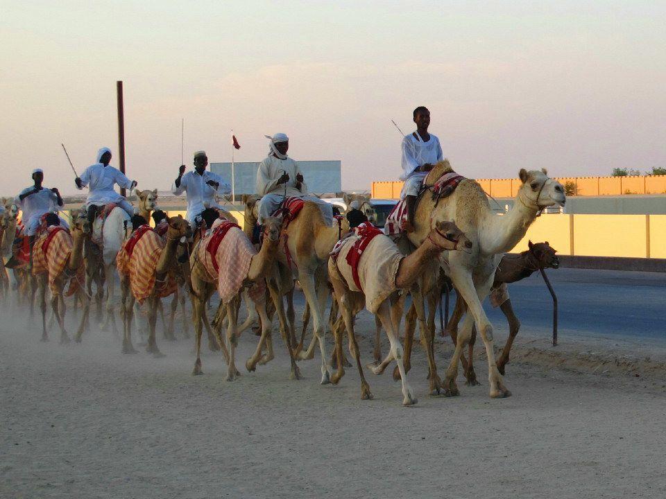 11 Tourist Hotspot In Qatar