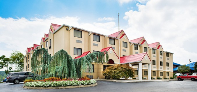 Josh Jambon:What You Should Consider When Buying A Microtel