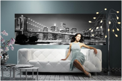 Give Any Room In Your Home A Fantastic Theme With Wall Murals