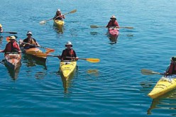 The Must Haves In The Recreational Kayaks For The Water Sport Enthusiasts