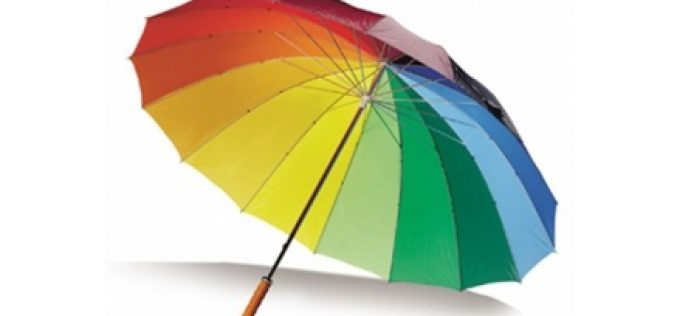 Find the best umbrella to get rid of rain and wind