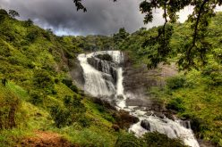 Coffee Plantations, Secluded Waterfalls and Delectable Cuisine- Coorg Beckons You This Monsoon