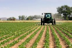 Conditions For Issues An Agricultural Bond and Whom To Approach For It